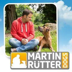 Martin Rütter Hundeschule Preise