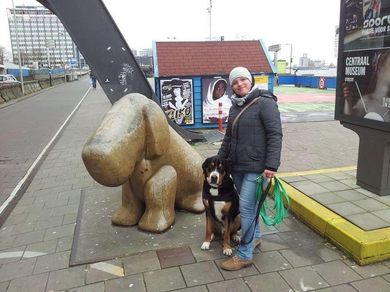 Klettergurt Hund : Amsterdam mit hund martin rütter dogs halle naumburg
