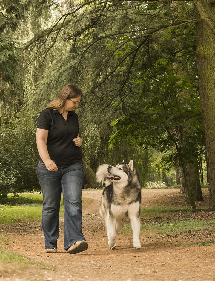 vom hund befriedigen lassen